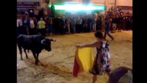 興奮した牛に立ち向かう泥酔女