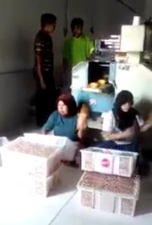 パンを高速で仕分ける女性従業員
