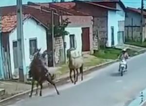 後方からのバイクにビックリしちゃった馬