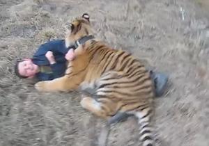 トラと遊ぶ子ども達