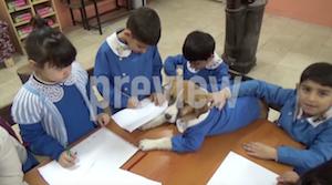 学校で授業を受ける保護犬