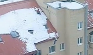 屋根上でギリギリの救助劇