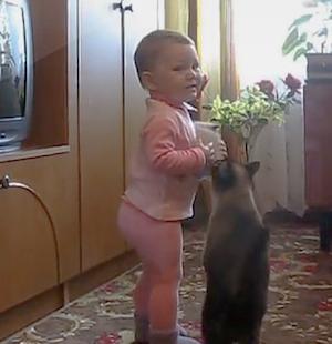 母猫に子猫を取られちゃった赤ちゃん