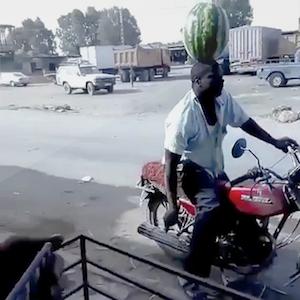 スイカを頭の上に乗せてバイクに乗る男
