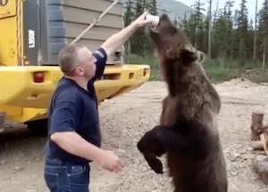 野生のクマに餌付けしてみた