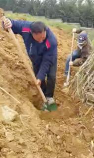 土砂崩れ現場から子犬を救助