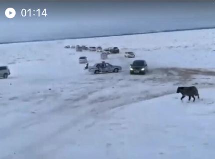制止を無視して凍った川を渡る人々