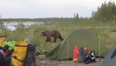 バイクふかして熊撃退